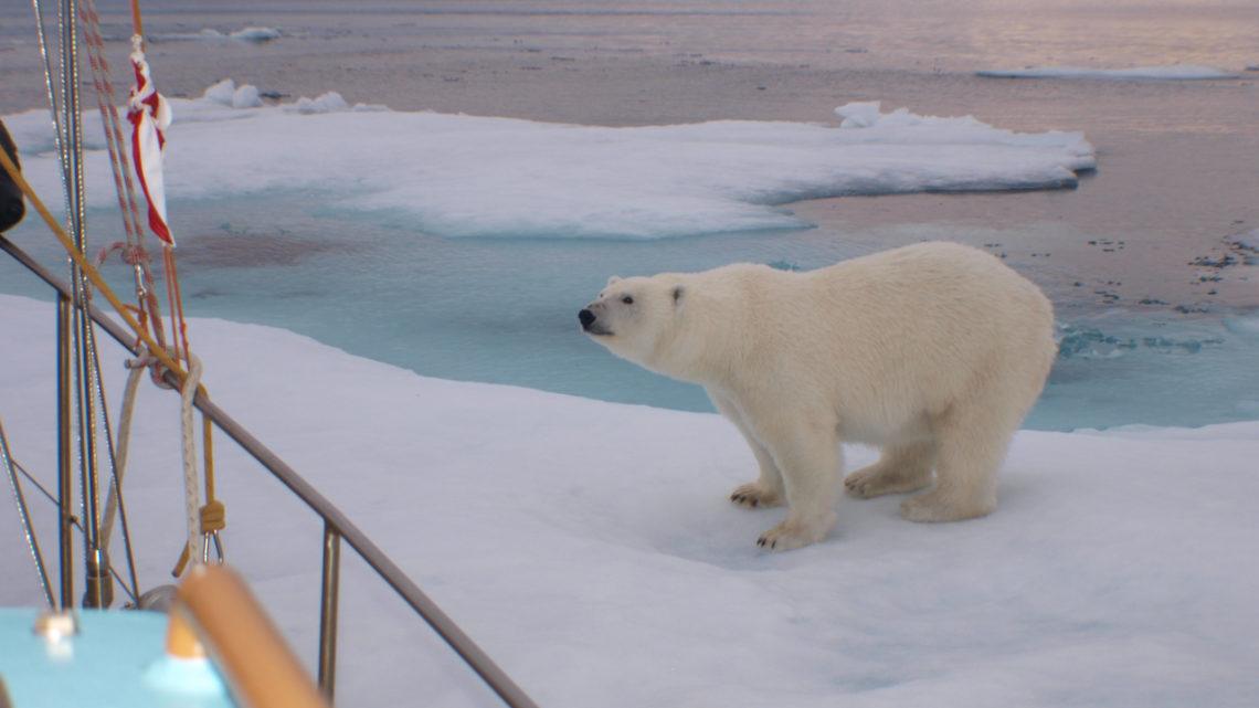 Nordwest Passage – eine Dokumentation
